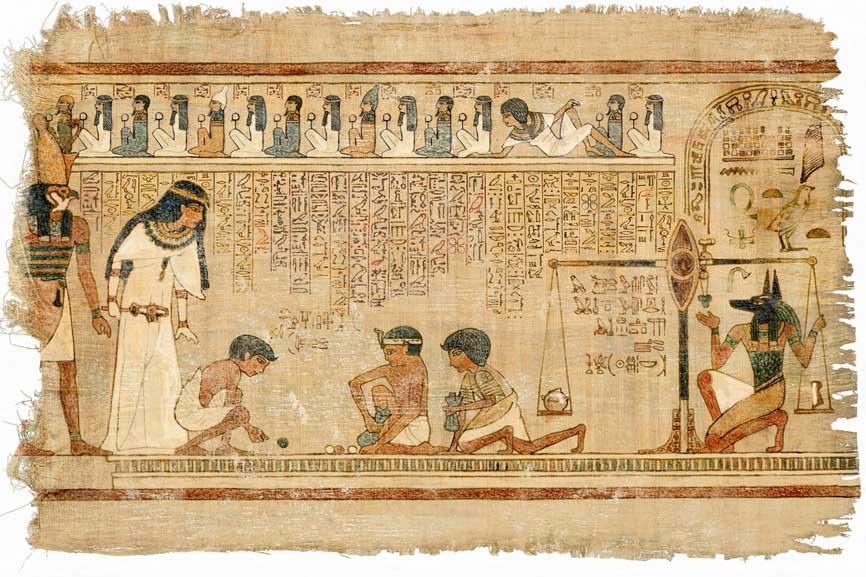 Papyrus Paper papyrus plantation outside