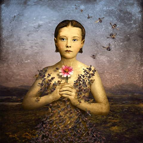 Girl-in-a Bee-Dress © Maggie Taylor