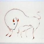 Feeding-(Buffalo)-Eddy-Cobiness