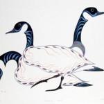 Feeding Geese-Eddy Cobiness