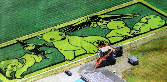 2010 Rice Field Art: Inakadate, Japan