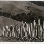 Ranch Old Big Sur Road-Edward Weston-1935