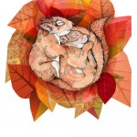 squirrel_spoon-Sandra-Dieckmann