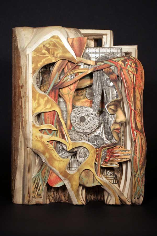 Brian Dettmer: Textonomy