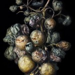 Peter Lippmann: Photography
