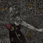 And-Thru-the-Pinhole-Stars-Alessia Iannetti