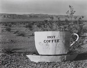 Edward Weston: 1886-1958