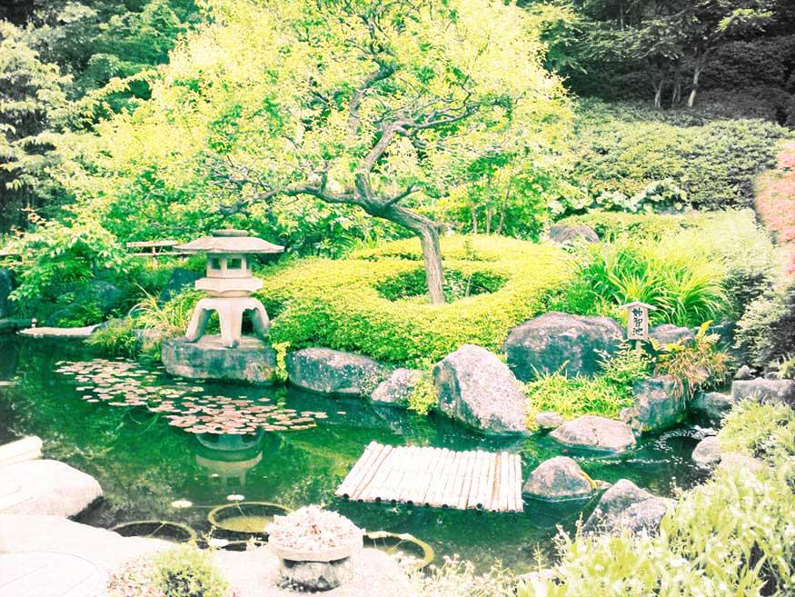 Japanese Garden  Wendy Campbell